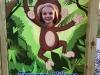 Be a monkey!